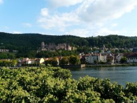 view of castle ruins - Heidelberg