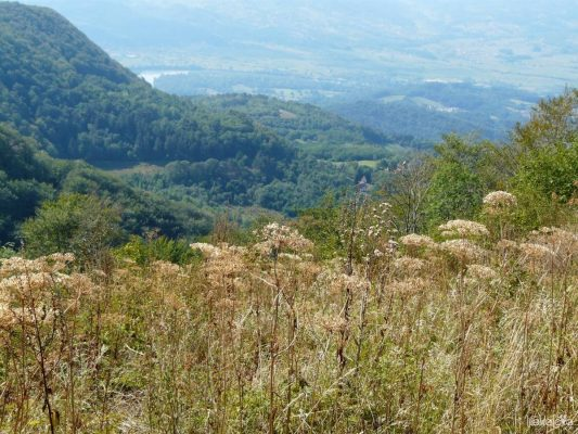 gucevo-view