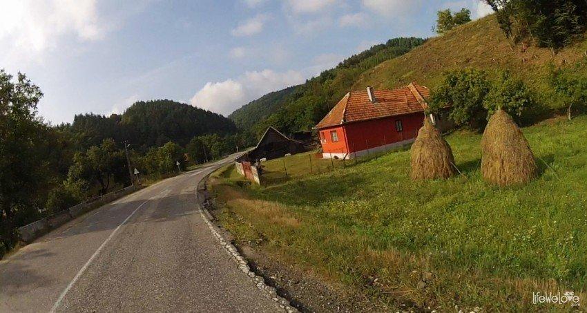 Snopy siana w Rumunii