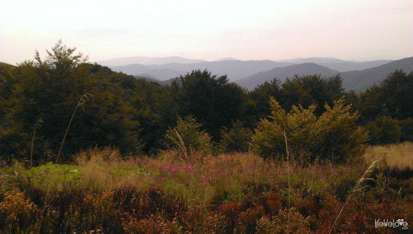 Bieszczady- panorama