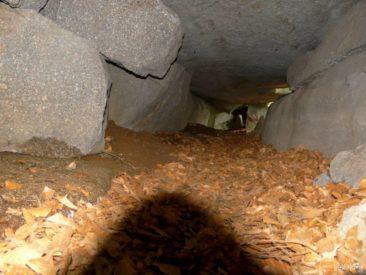 Jaskinia w Michałowicach