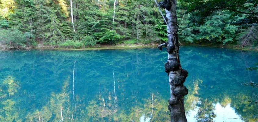 Colourful Lakelets – the wonder of nature in Lower Silesia