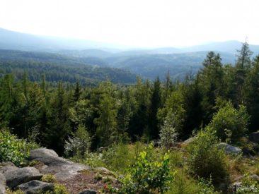 Michałowice - the Golden View (Złoty Widok)