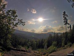 Michałowice - Golden View (Złoty Widok)