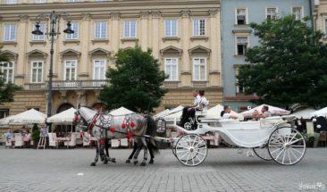 Powóz konny w Karkowie