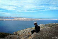 Liwia na wyspie Pag