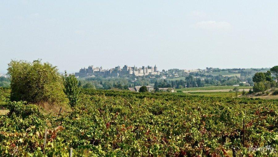 Carcassonne z oddali