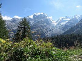 Alpy Wschodnie