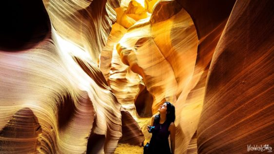 On the path of water. Spectacular maze of Antelope Canyon