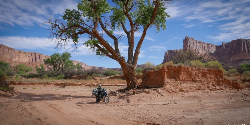 white-rim-road-moab-usa-11