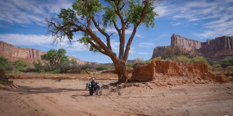 white-rim-road-moab-usa-11