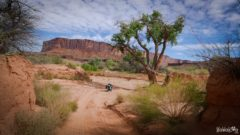 white-rim-road-moab-usa-14