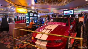 Mustang in casino