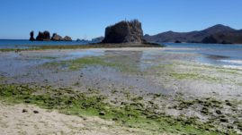 San Basilio Baja California