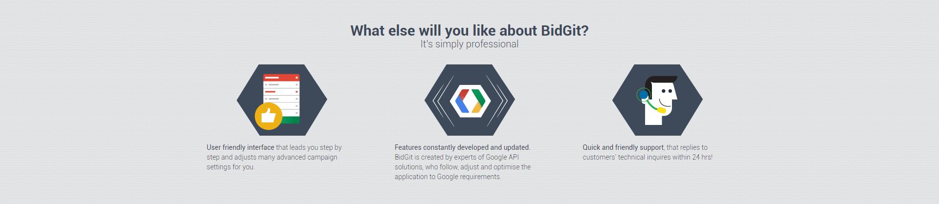 BidGit what else to like