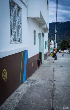 colombia-guacamayas-dia-de-las-velitas-21