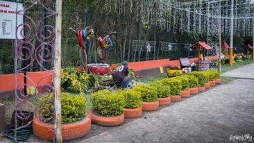 colombia-guacamayas-dia-de-las-velitas-24
