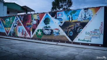 Guacamayas w Kolumbii mural