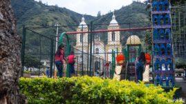 Guacamayas w Kolumbii