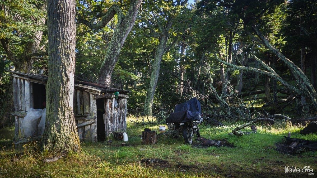 Rybacka chatka w lesie