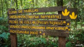 Urugua-i Provencial Park