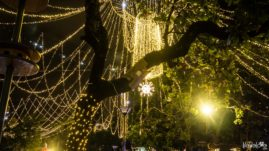 Medellin Christmas Lights