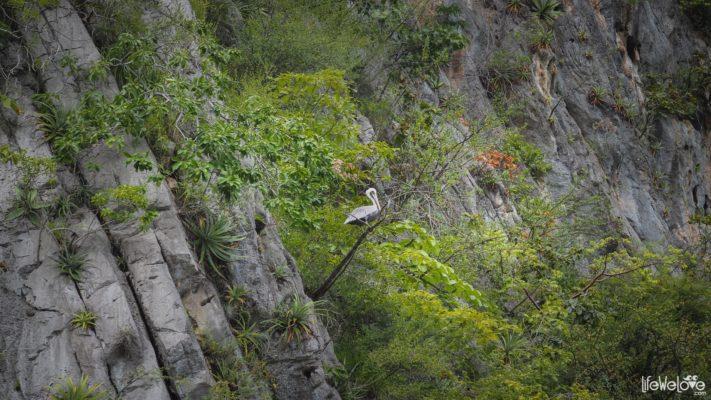 Sumidero Kanion, Meksyk, Chiapas